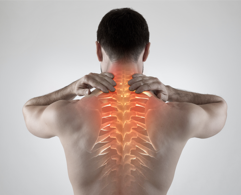 image of a man's spine, a common area treated by osteopaths
